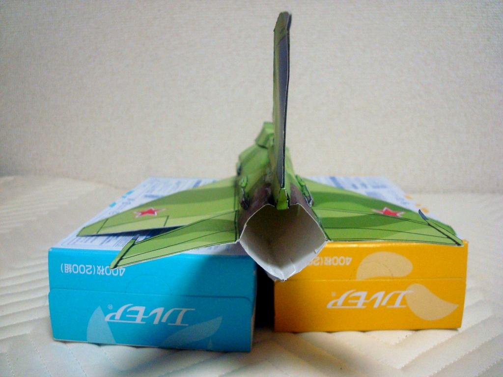 MiG-21_Fishbed_back.jpg