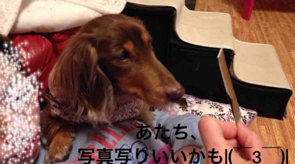 fc2blog_20170318011847a8b.jpg