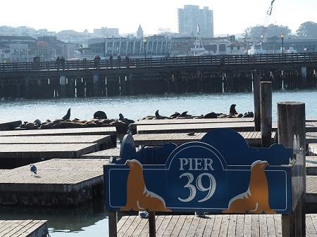 PB142145.jpg