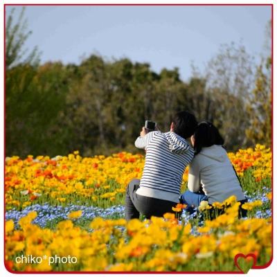 photo-701_2.jpg