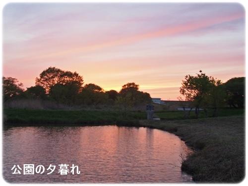 公園の夕暮れ