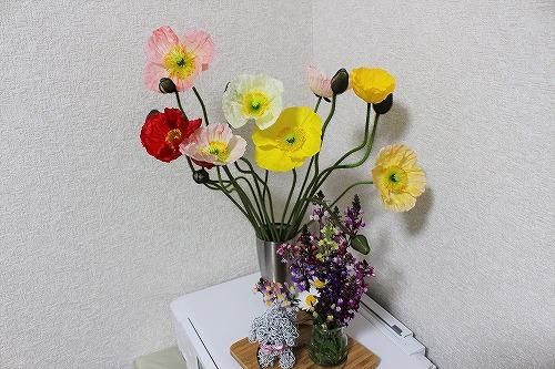 花摘み22