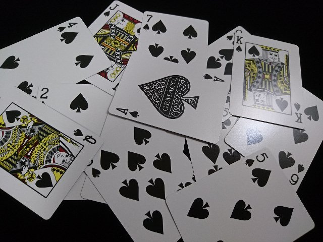 Wynn Deck Diamond Back (Gemaco) (6)