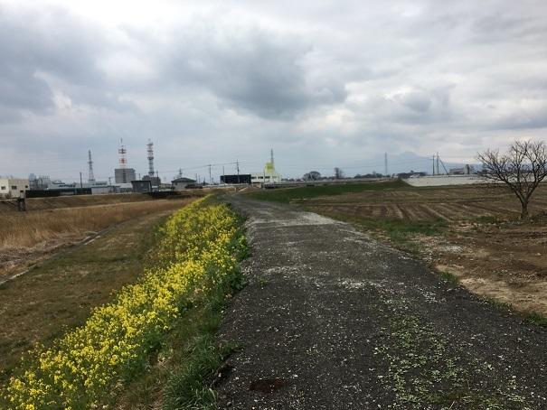 交通事故 前橋 接骨院 (2)