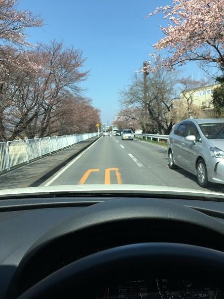 交通事故 前橋 整形外科 (6)