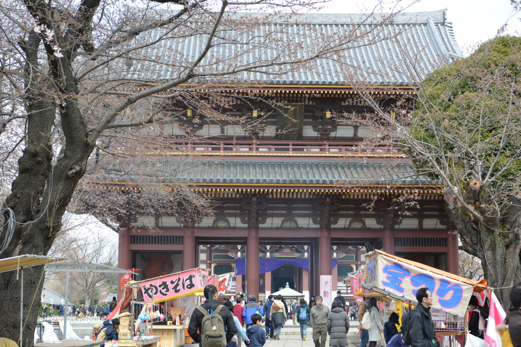 仁王門と大堂