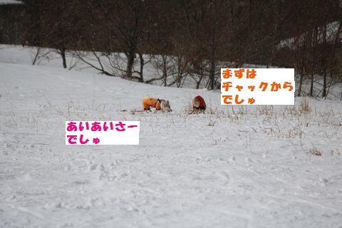 2017022506.jpg