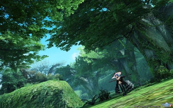森の魔法使い