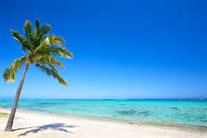 風景 砂浜