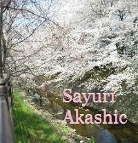 桜と菜の花の季節に アカシックレコードリーダーさゆり