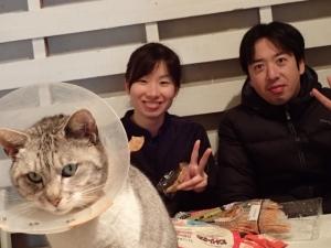 2猫のあおもり (1)