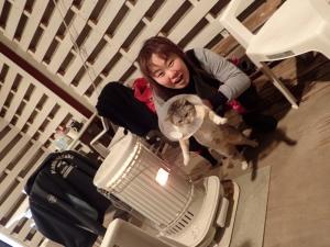 2猫のあおもり (2)
