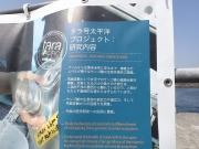 タラ号新港埠頭ふ頭 (11)