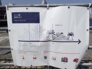 タラ号新港埠頭ふ頭 (12)