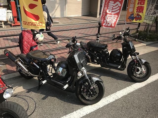 IMG_0545.jpg