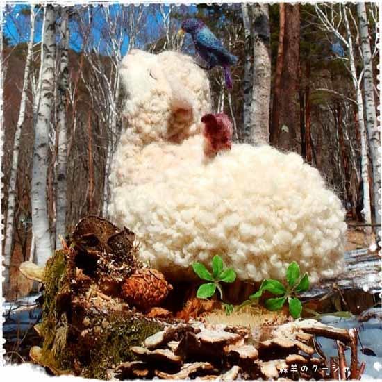 森羊のクーシャ2017-1