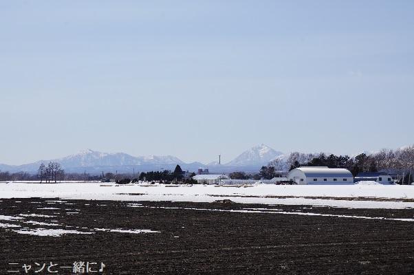 tokuyama320.jpg