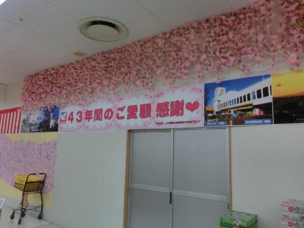 メッセージ桜の木