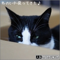 dai20170220_banner.jpg