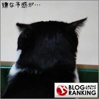 dai20170223_banner.jpg