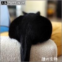 dai20170313_banner.jpg