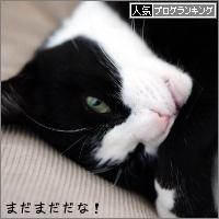 dai20170316_banner.jpg