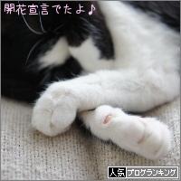 dai20170321_banner.jpg