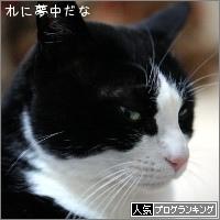 dai20170328_banner.jpg