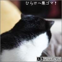 dai20170329_banner.jpg