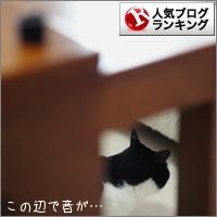 dai20170330_banner.jpg
