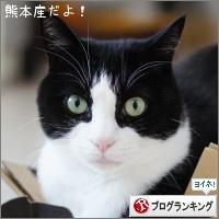 dai20170404_banner.jpg