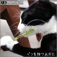 dai20170407_banner.jpg