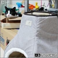 dai20170412_banner2.jpg
