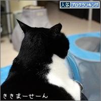 dai20170417_banner.jpg