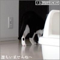 dai20170419_banner.jpg