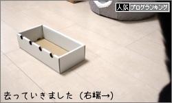 dai20170420_banner.jpg