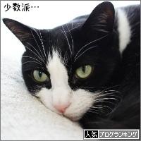 dai20170425_banner.jpg