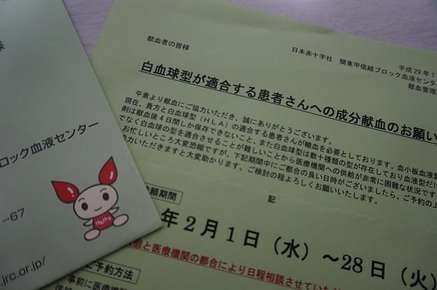 献血依頼の手紙