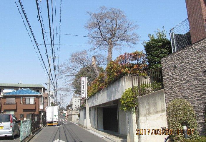 201703120urawa17.jpg