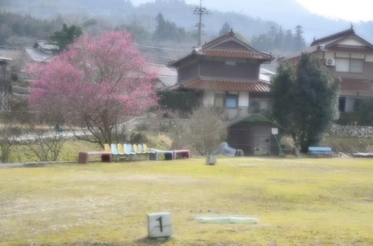 170306satoyamanoharu005.jpg