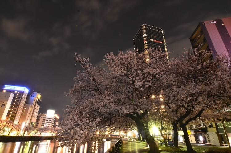 170409hiroshimaekimae002.jpg