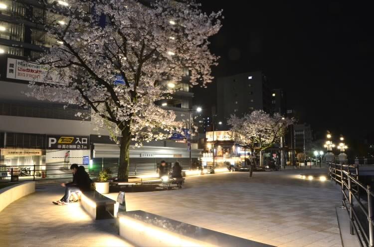 170409hiroshimaekimae012.jpg