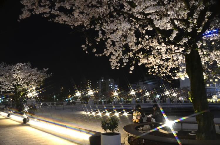 170409hiroshimaekimae013.jpg