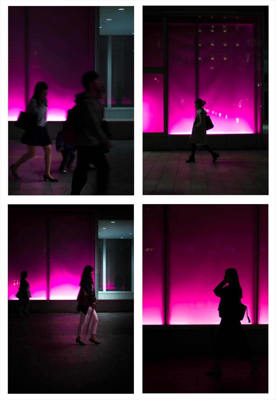 2017SnapRed-purple.jpg