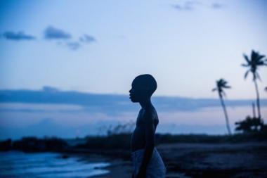 『ムーンライト』 黒人の肌は月明かりでブルーに輝くという。シャロンがリトルと呼ばれていた時代。