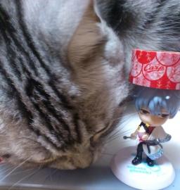 猫 ちびキュン銀さん カープ マスキングテープ