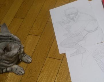 鉛筆絵 猫
