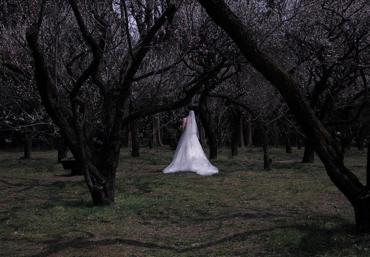 X02花嫁