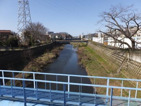 水道橋より野川上流を望む