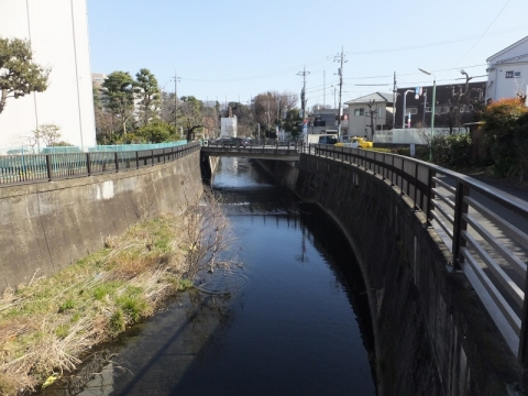 大蔵水道橋より仙川下流を望む